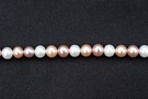 Mixed Round 6-6.5mm : AA Grade Pearls > Mixed Colour